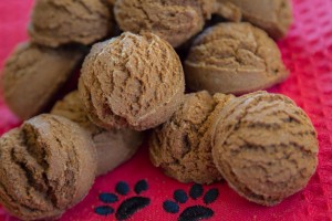 Ginger Dog Treats